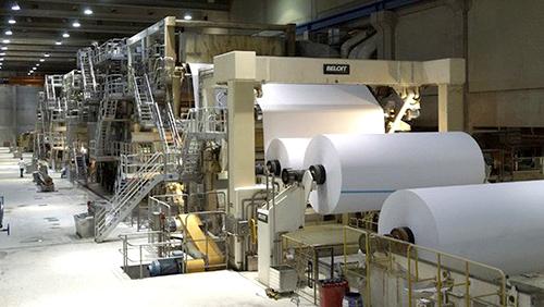 ngành giấy